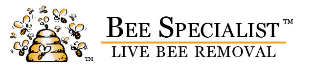 Burbank Bee Removal Specialist header image
